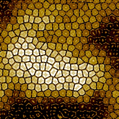 Photoshop-honeycomb-bee-hive-wax